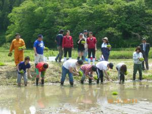 Rice planting event in Taiwa-cho with overseas students.