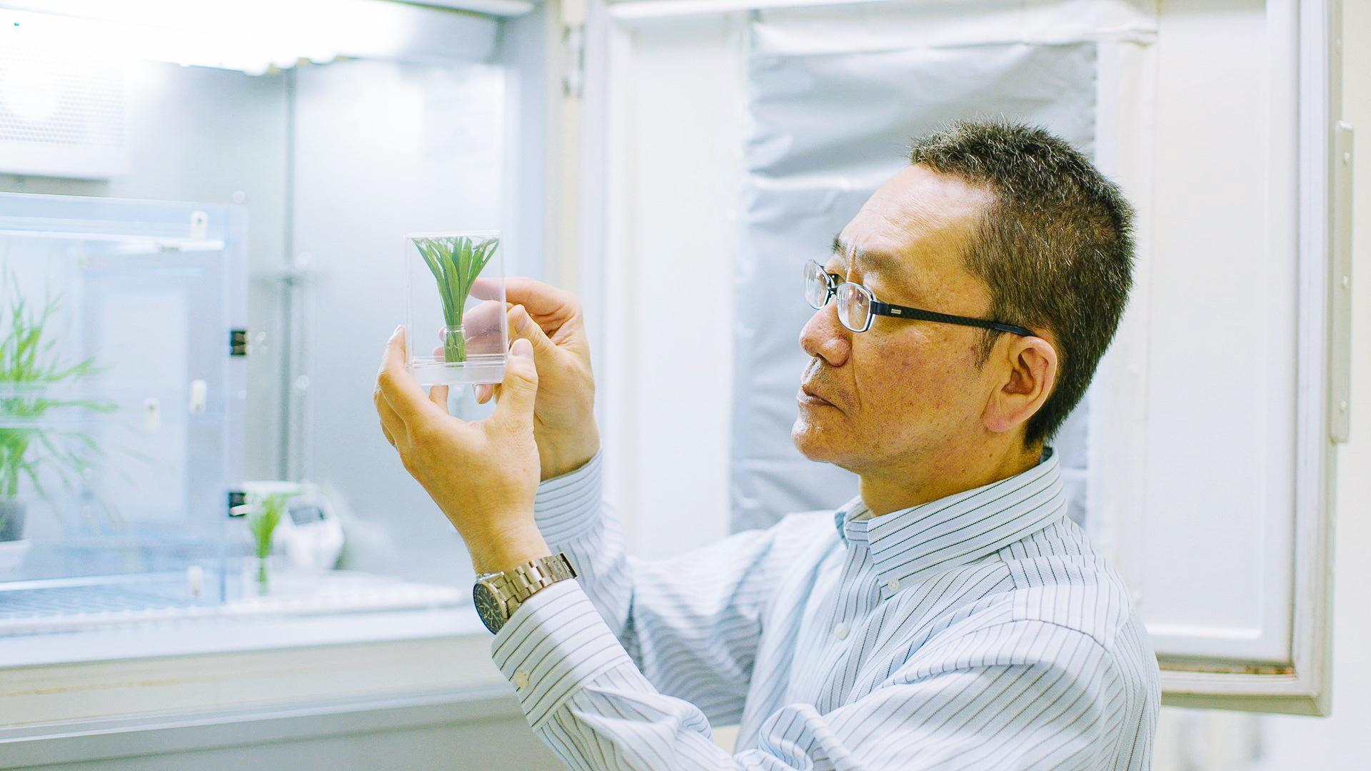 食産業学群中村茂雄教授による「昆虫食」への挑戦